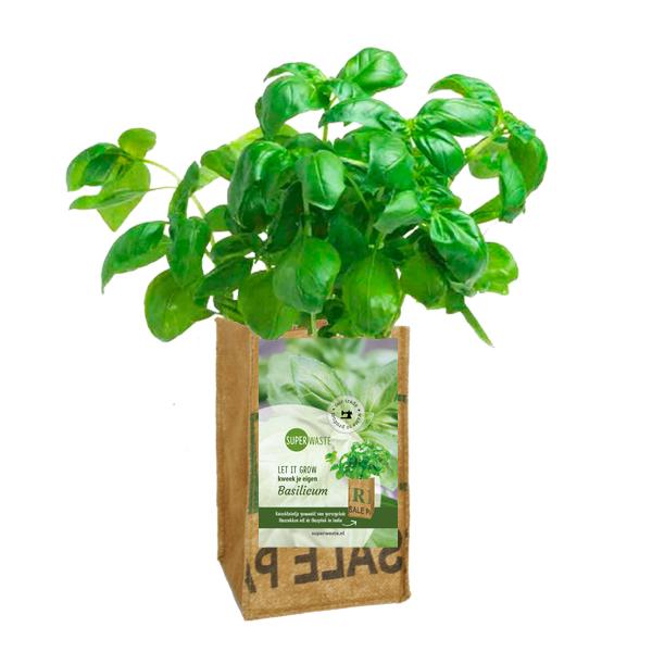 Kweektuintje om op te hangen in een fairtrade kweekzakje van Superwaste - basilicum