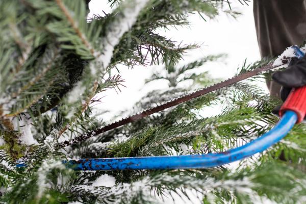 kerstboom met zaag kerstpakketen voor mannen